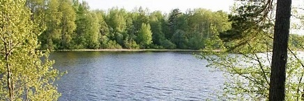 20,6 Ha land site on the Vuoksi lake, Talitsa bay